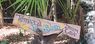 Path sign in Tulum.