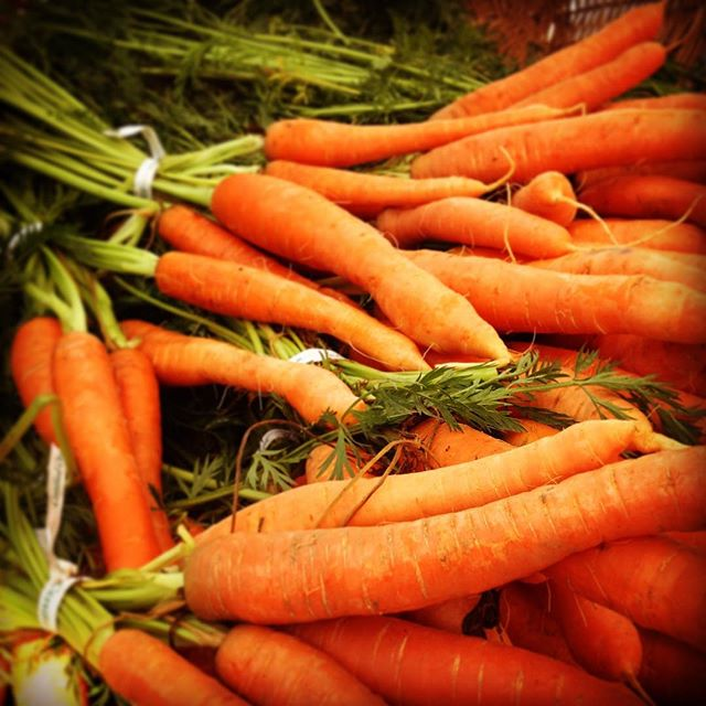 Carrots at BFM.
