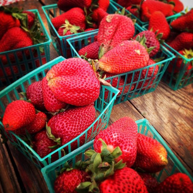 Strawberries at BFM.
