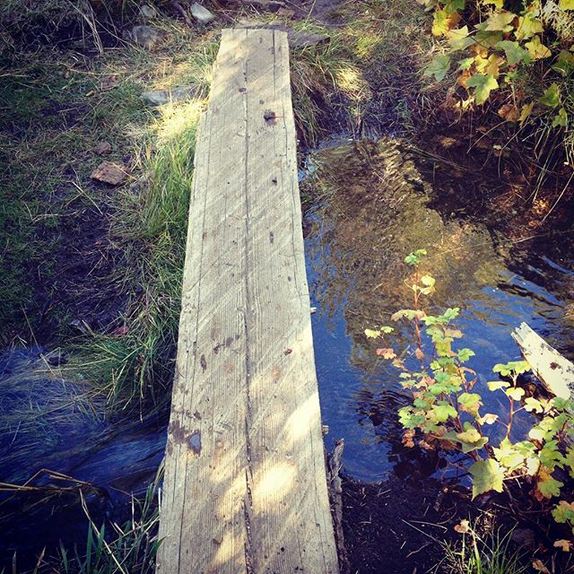 Walking the plank to the well.