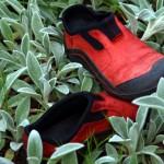 Garden shoes.