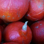 Red Kabocha Squash at the market.