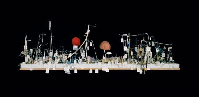 Catherine Wagner, Museum Pieces, Ship II, 1999, Chromogenic print, 40 x 70 in.