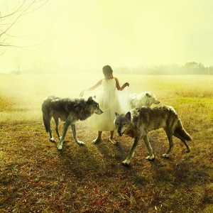 Tom Chambers, Middle Light