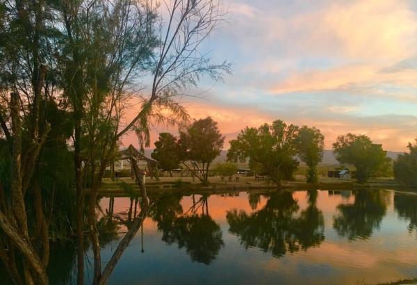 Joshua Tree Lake RV & Campground