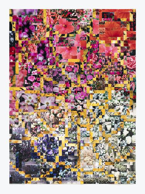 "Joe Rudko, Flower Web, 2020, found photographs on paper, 28 1/2"" x 20 1/2"""